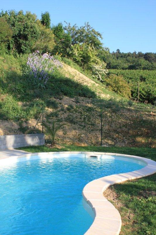 La piscine en forme de haricot