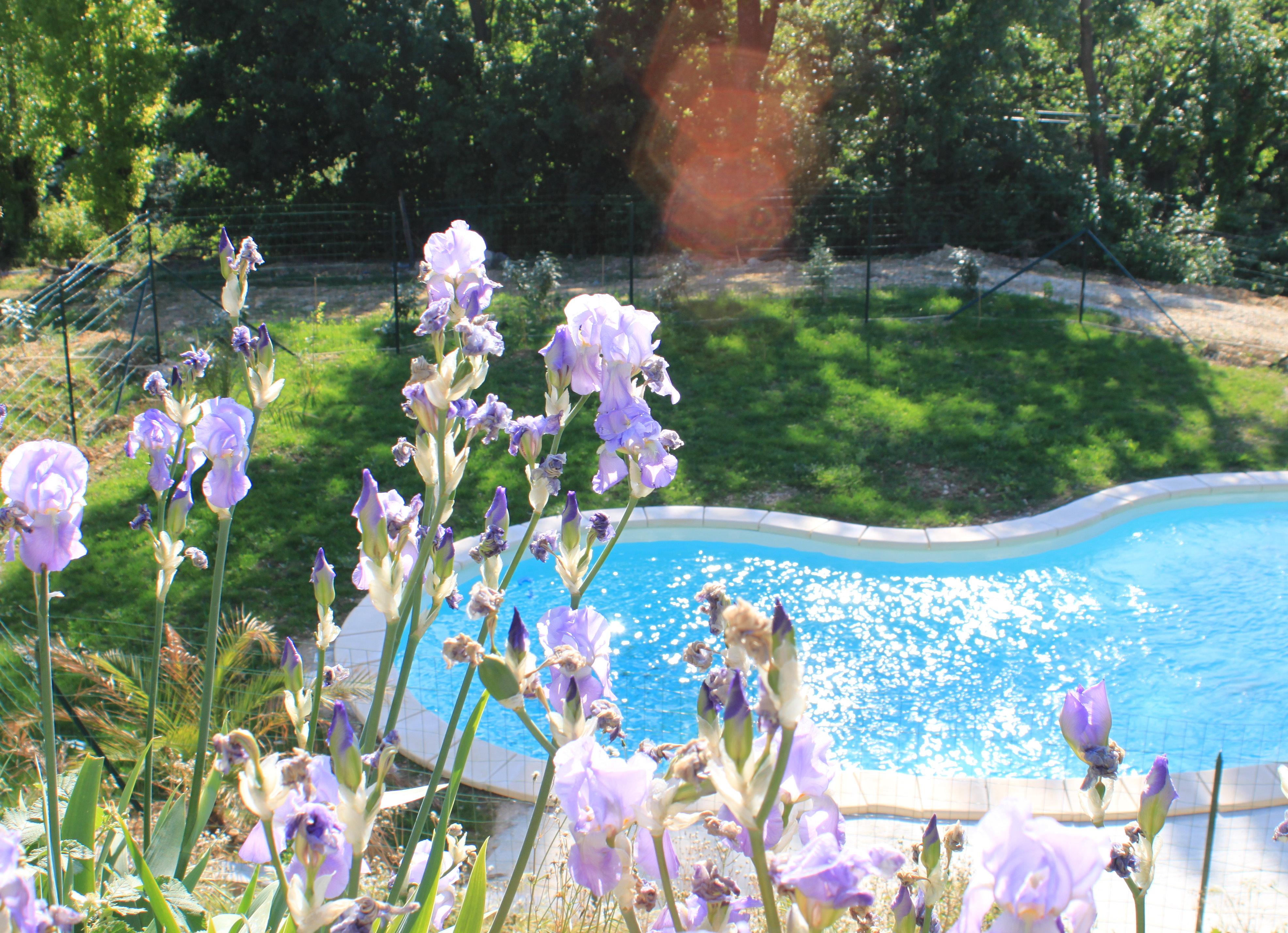 Les vergers de la bouligaire g tes chambre d 39 h te avec - Chambre d hote dans la drome avec piscine ...