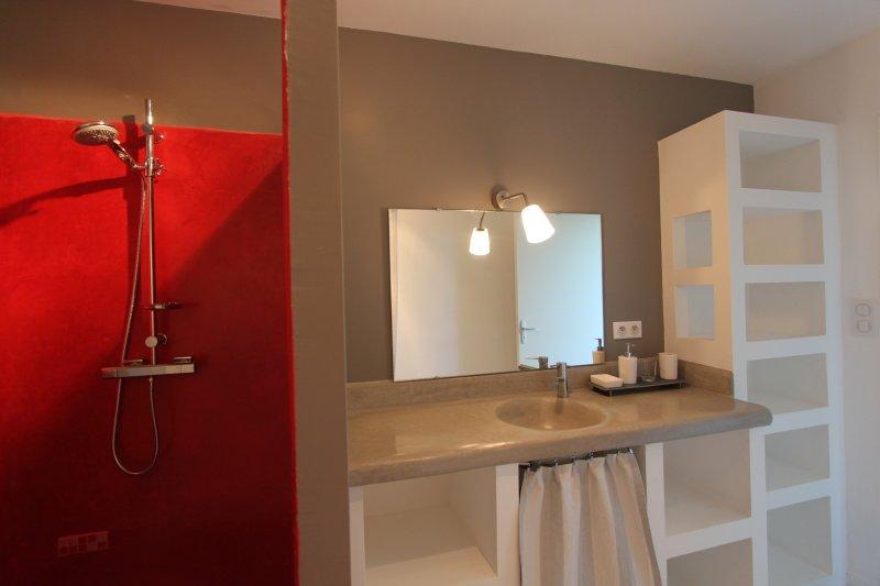 La salle de bain avec sa douche à l'italienne et sa vasque en tadelakt